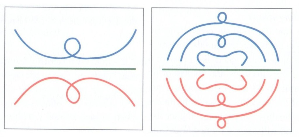 Handedness pattern 4